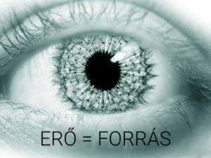 cka-ero-equal-forras-roboto-light-300_top-10-degrees-for-emerging-industries